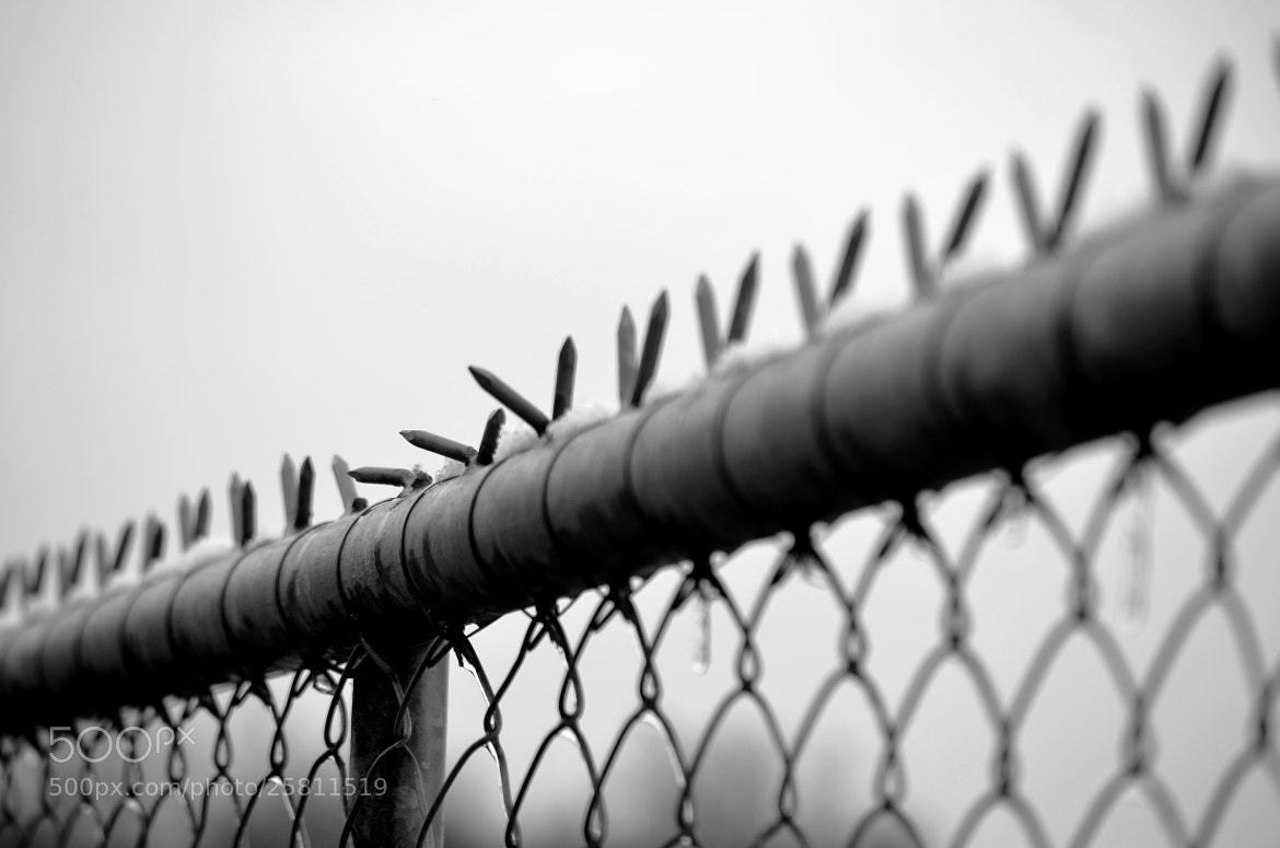 Photograph Fence by Peter Kempf on 500px