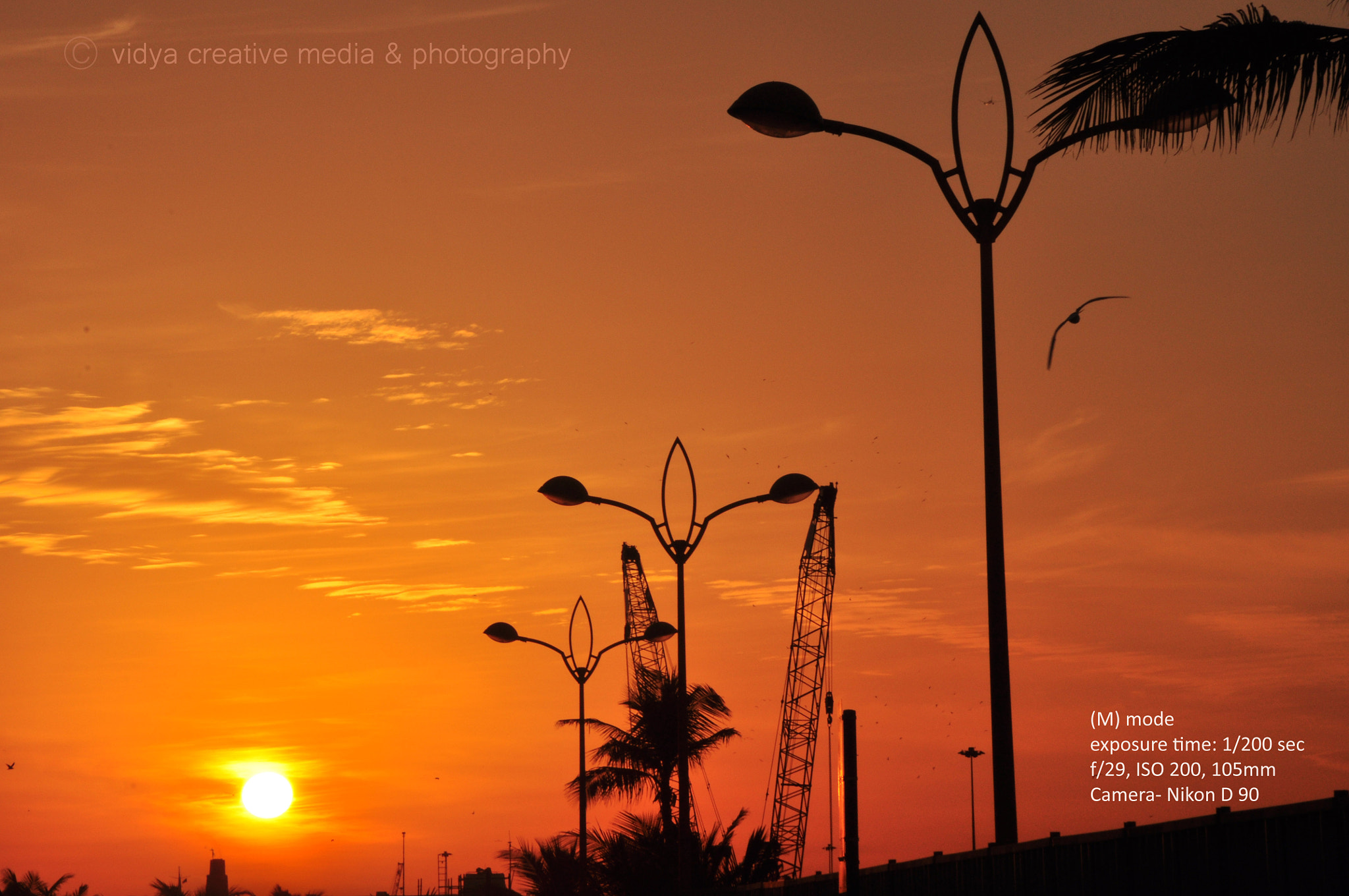 Photograph Dusk by vidya creative media & photography - Shamjith Sreevidya on 500px