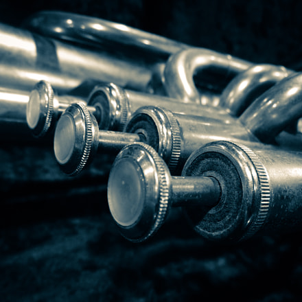 Trompet, Sony DSC-QX10