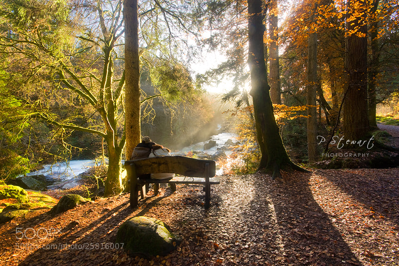Photograph Autumn Retreat by Philip Stewart on 500px