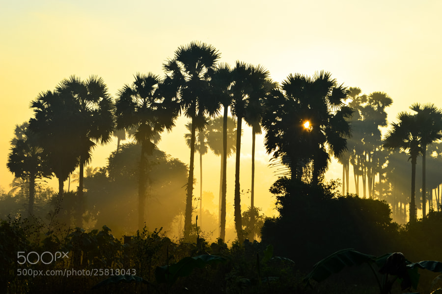 Photograph Eastern Rise by Rishikeshan Pangushan on 500px