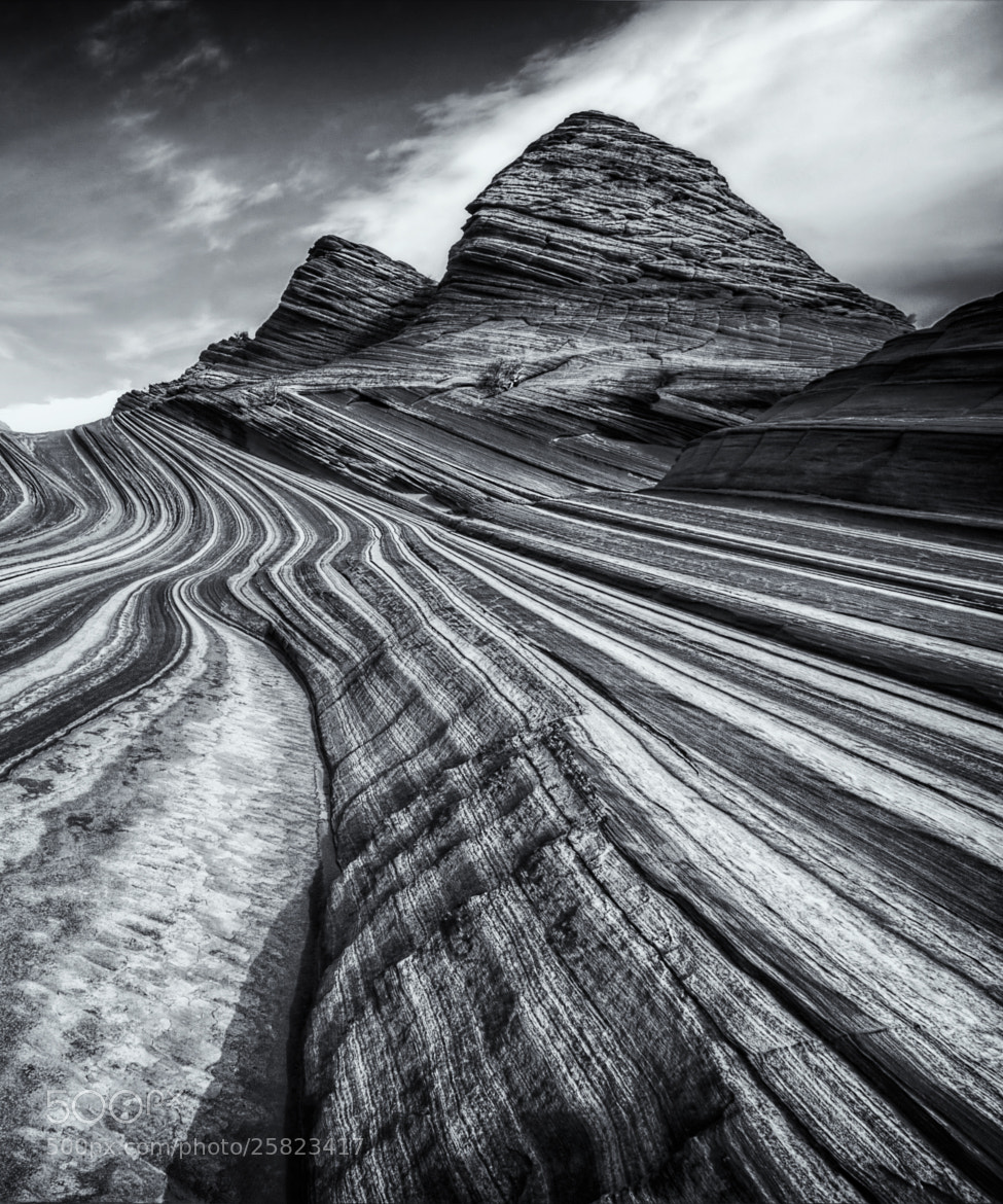 Photograph Ahead we go by Danilo Faria on 500px