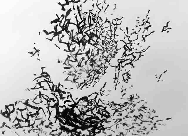 Photograph Flying Birds by Constança  Vargas on 500px