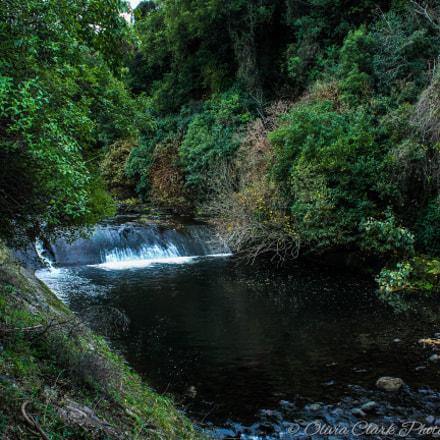 Leith River, Canon EOS 3000D