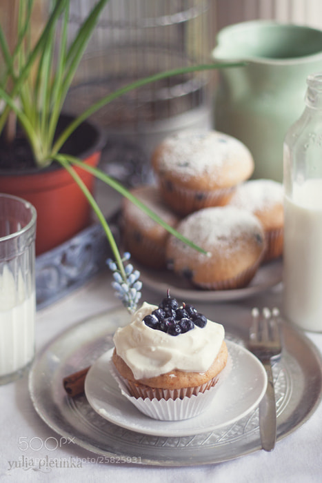 Photograph muffins with blueberry by Yulia Pletinka on 500px