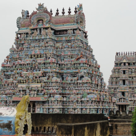 sri ranganathaswamy temple, Sony DSC-H20