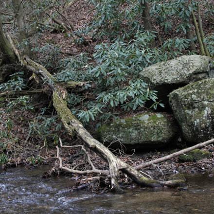Bolders Beside Creek Zoner, Canon EOS REBEL T2I, Sigma 18-125mm f/3.8-5.6 DC OS HSM
