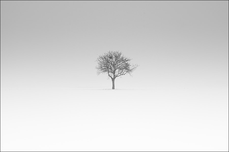 Photograph Minimalism by Benoît Exbrayat on 500px