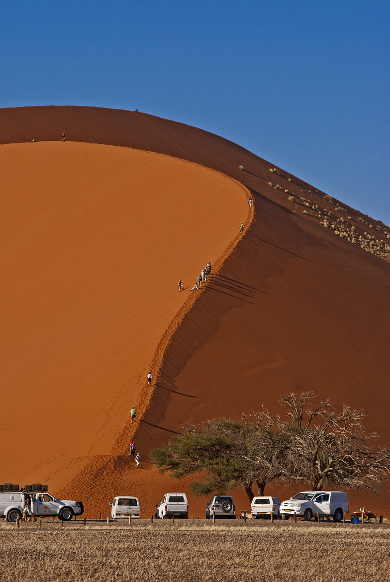 Photograph Dune 45, Sossuvlei by Konstantinos Arvanitopoulos on 500px