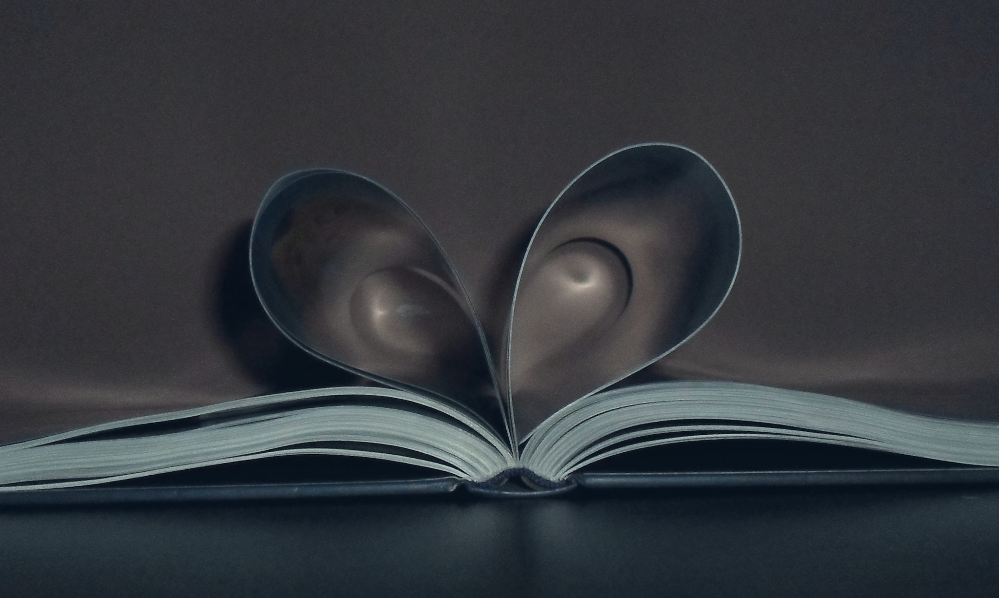Photograph heart book by Panait Sorin on 500px