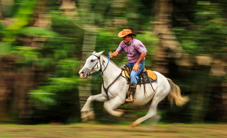 Photograph Off to the races! by Bill Killillay on 500px
