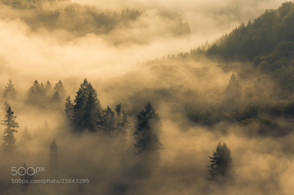 Photograph Fog at the Saarschleife by Karsten May on 500px