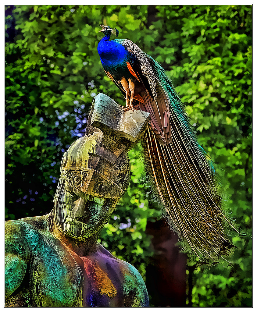 Photograph The man with the feather-helm by Klaus Wiese on 500px