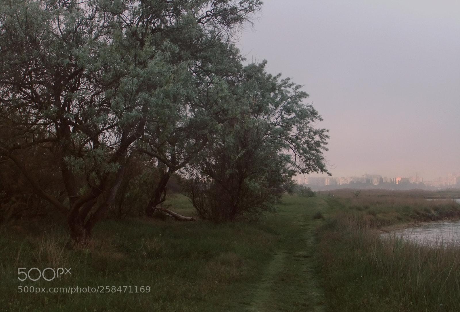 "FujiFilm FinePix JZ500 (FinePix JZ505) sample photo. ""Pleasant evening"" photography"
