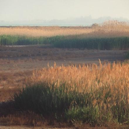 reeds., Fujifilm FinePix JZ500