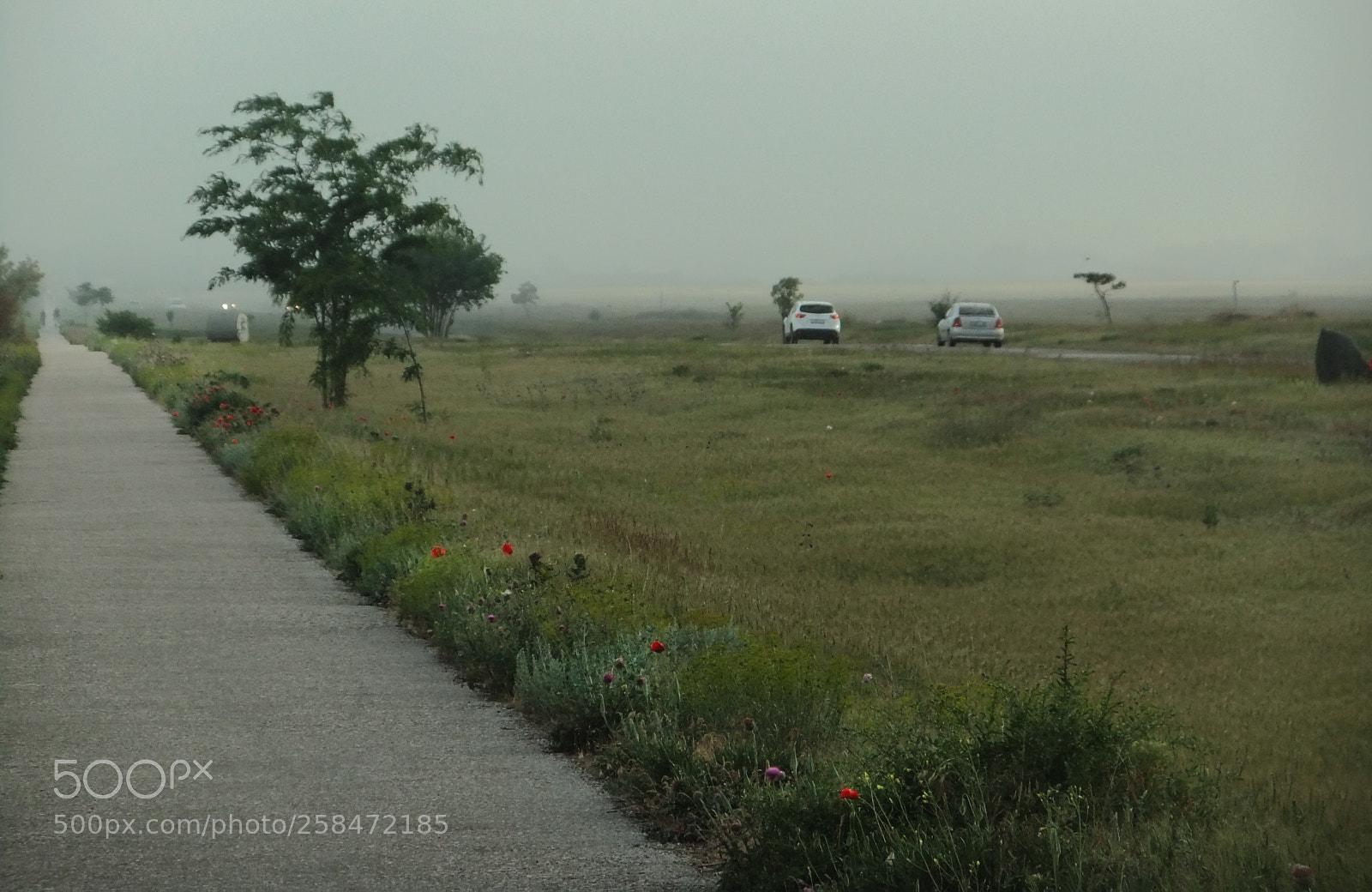 """FujiFilm FinePix JZ500 (FinePix JZ505) sample photo. """"Countryside landscape"""" photography"""