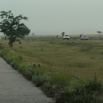 countryside landscape, Fujifilm FinePix JZ500