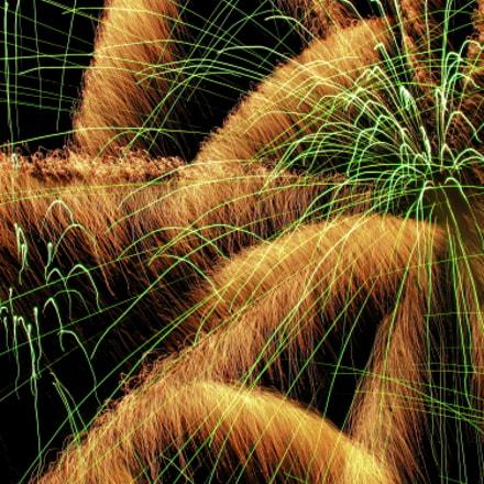 Feuerwerk a, Canon DIGITAL IXUS 110 IS