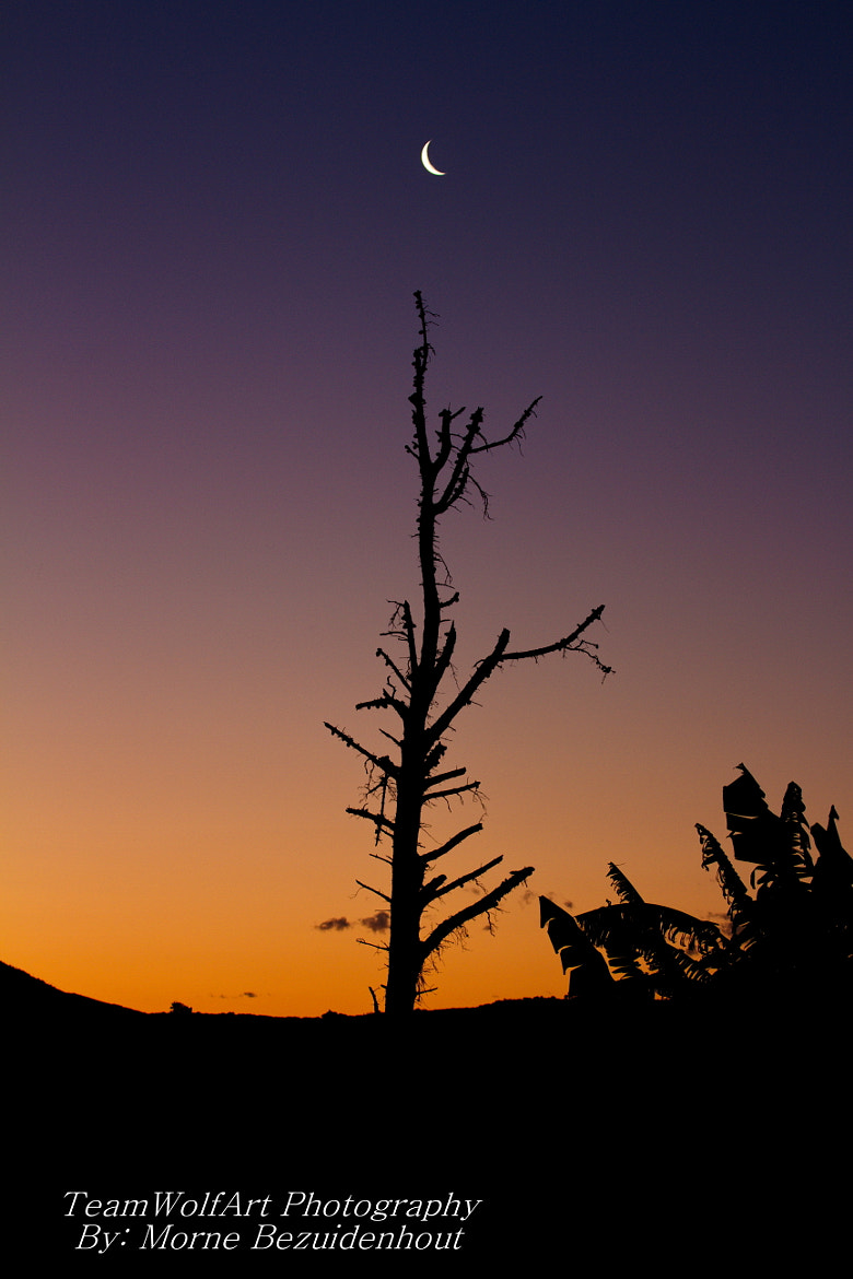 Photograph Sun Set  by Morne  Bezuidenhout on 500px