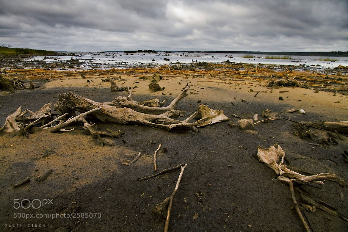 Photograph Coast of bones by Maxim Zinchuk on 500px