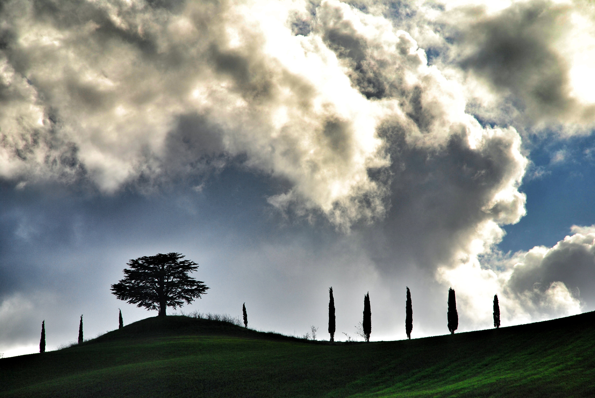 Photograph Tuscan hill by luigibertagni on 500px