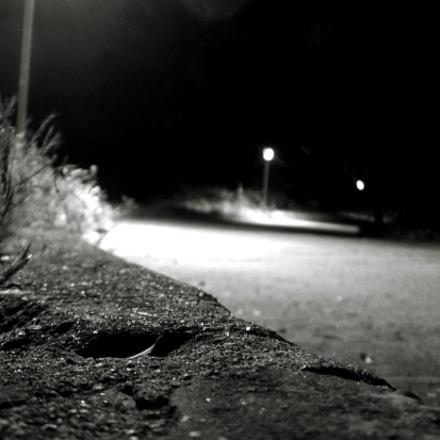 Wild, Nikon E800