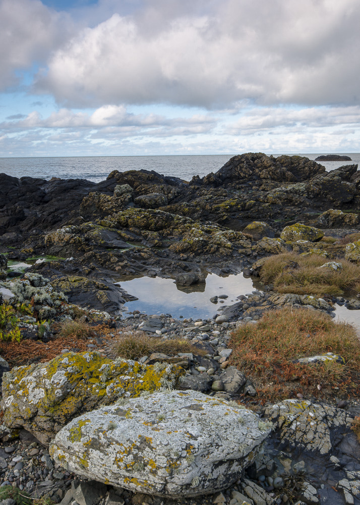 Photograph Porthdinllaen pools by Philip King on 500px
