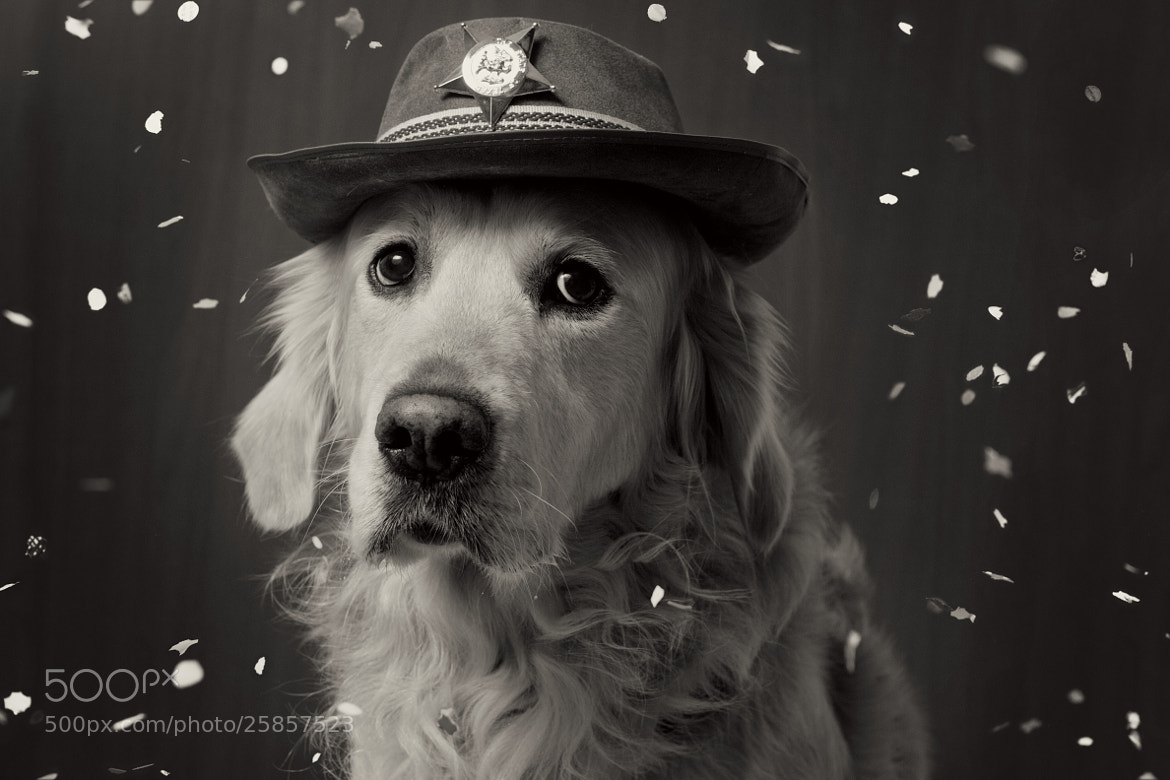 Photograph The Sheriff by Keiko 86 on 500px