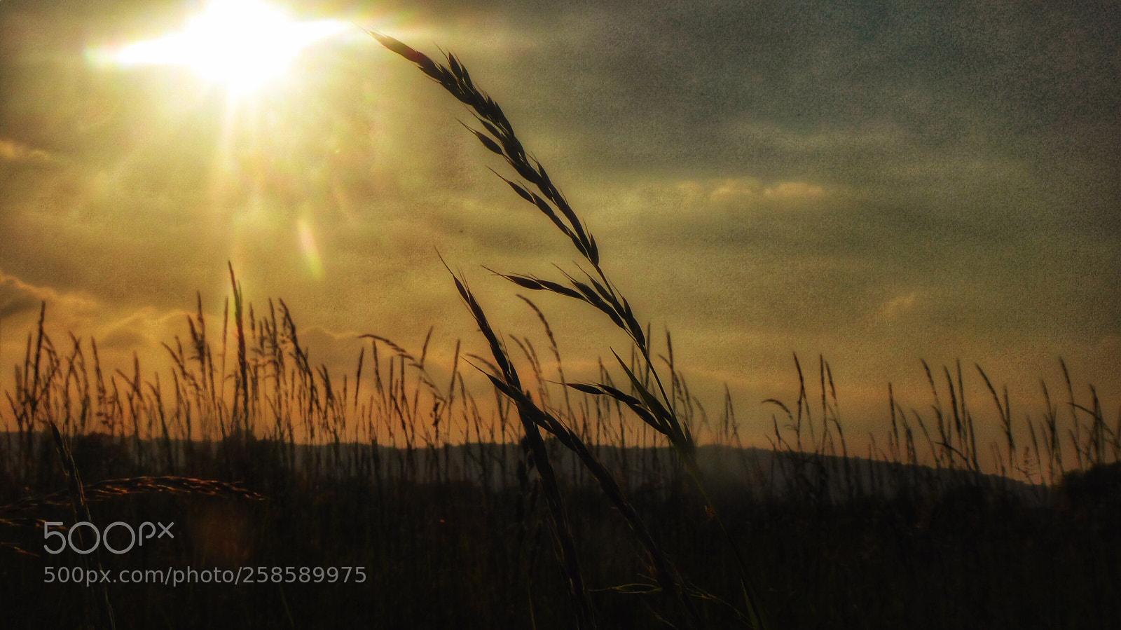 Himmel Erde Schatten Licht, Panasonic DMC-TZ71