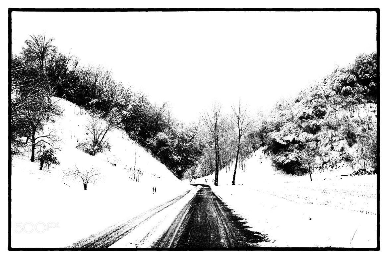 Photograph winter by Luigi Cavasin on 500px