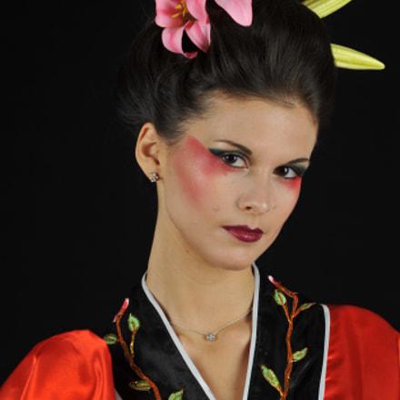 Geisha mood, Nikon D700, AF Zoom-Nikkor 70-300mm f/4-5.6D ED