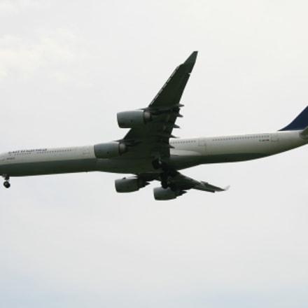 Lufthansa heavy, Canon EOS 400D DIGITAL, Sigma 18-125mm f/3.8-5.6 DC OS HSM