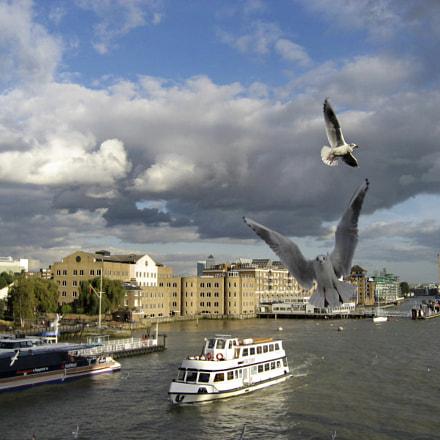 Birds over the river, Canon DIGITAL IXUS 800 IS