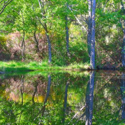 Laguna verde, Canon EOS M10, Sigma 17-70mm f/2.8-4.5 DC Macro