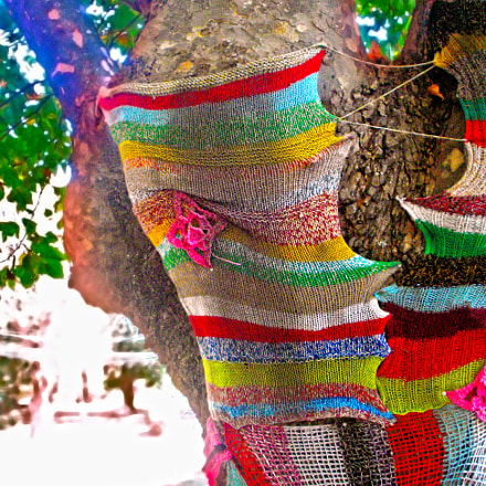 Yarn-coat., Sony DSC-W55
