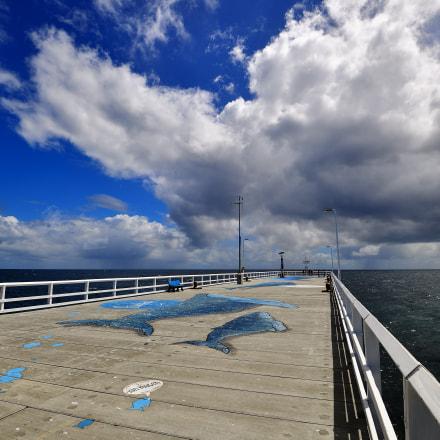 Cloudy, Nikon D5, AF-S Nikkor 16-35mm f/4G ED VR