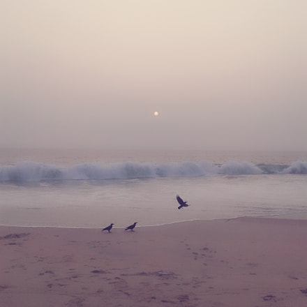 the beach, Samsung Galaxy Grand Neo Plus
