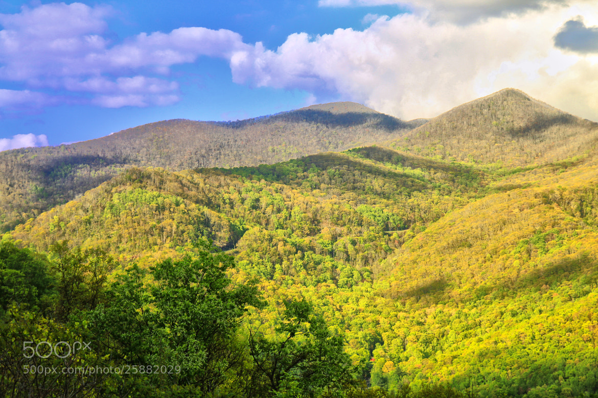 Photograph Blue Ridge Parkway by JVinson  on 500px