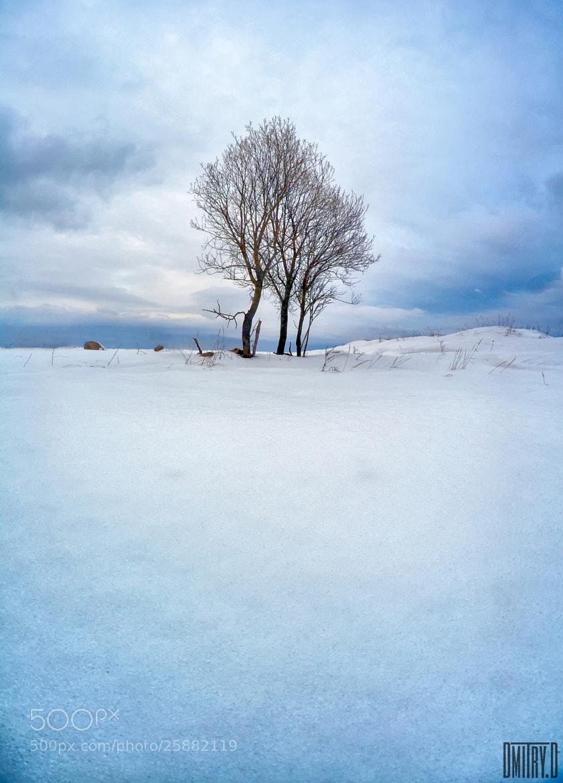 Photograph Trio by Dmitry Doronin on 500px