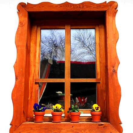 Window, Nikon COOLPIX L21