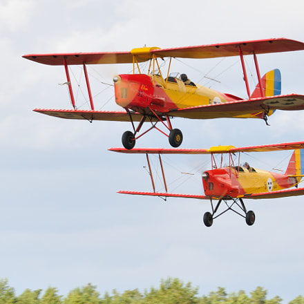 Tiger Moths, Nikon D300S, Sigma APO 100-300mm F4 EX IF HSM