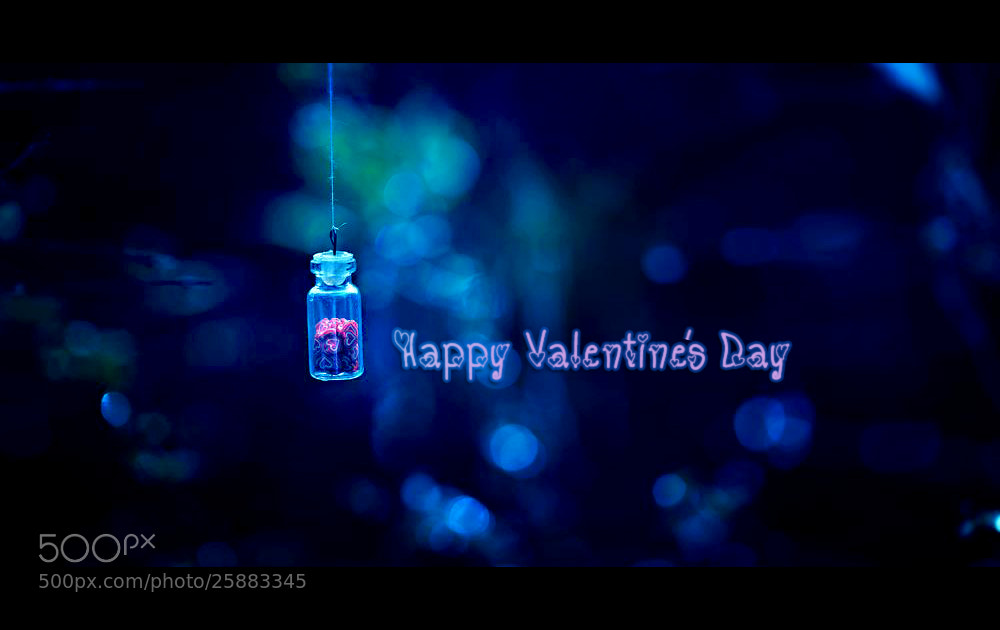 Photograph { Happy valentine's day } by Thai Hoa Pham on 500px