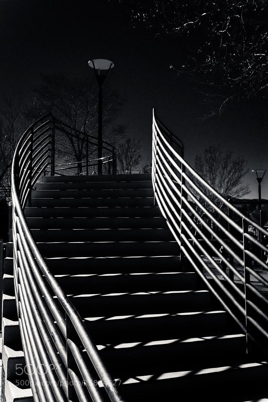 Photograph Upwards by Joseph Castoire on 500px