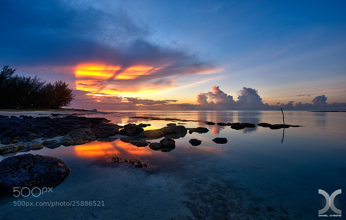 Photograph Untitled by Daniel Cheong on 500px
