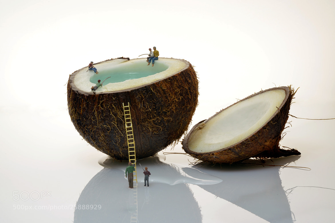 Photograph Coco Nut Fishing by Leon Dafonte Fernandez on 500px