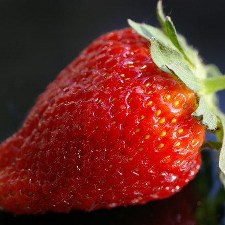 Strawberry, Pentax K100D, Tamron SP AF 90mm F2.8 (172E)