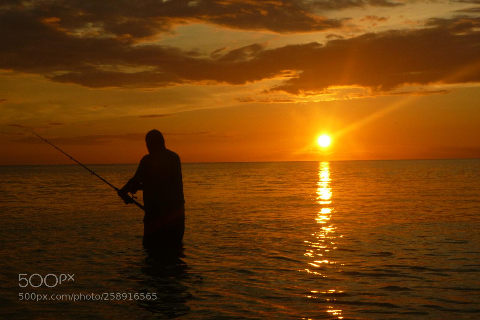 fish the sun