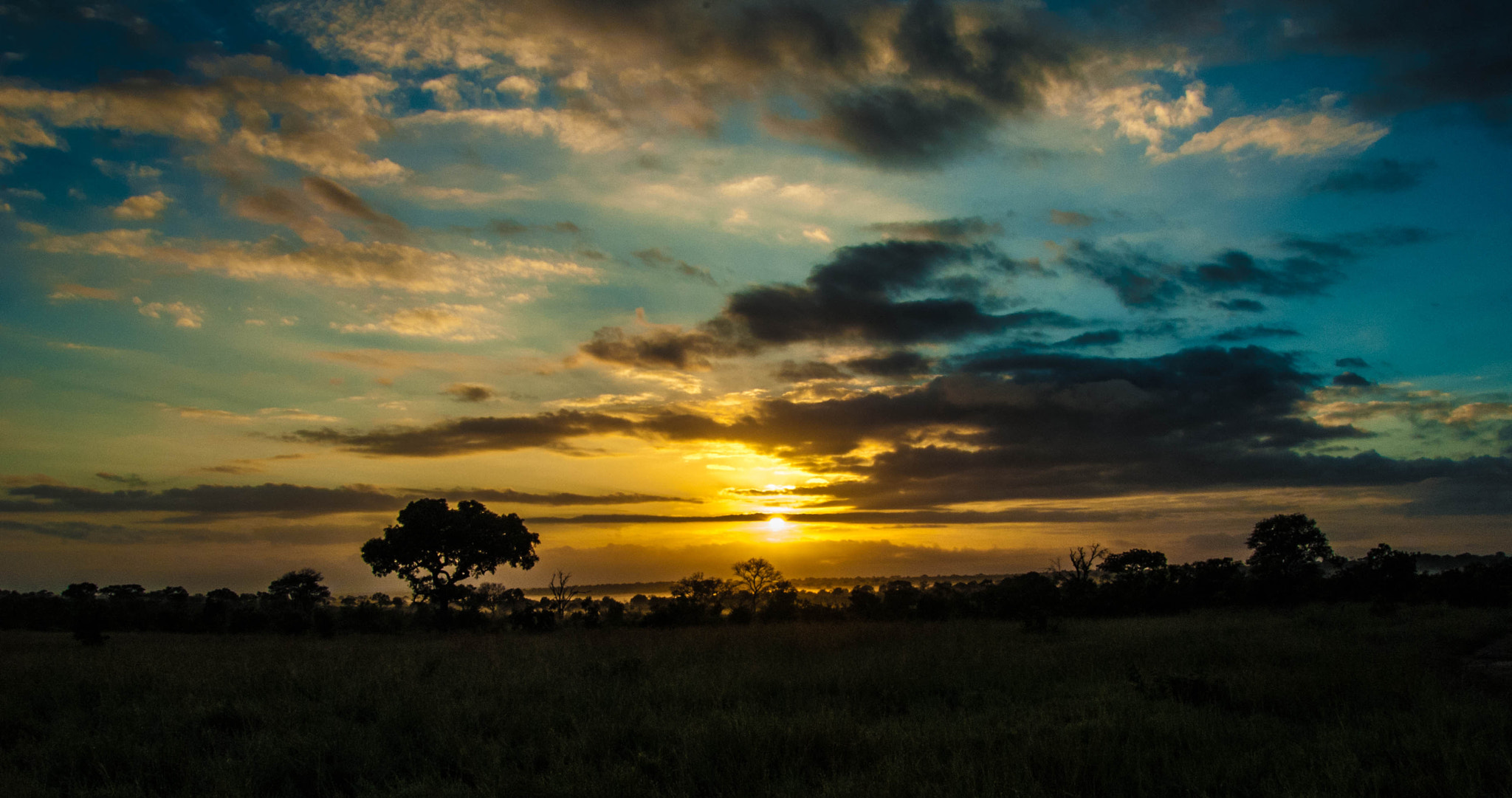 Photograph Sunrise @ Idube Game Reserve by Andrew Gaylord on 500px