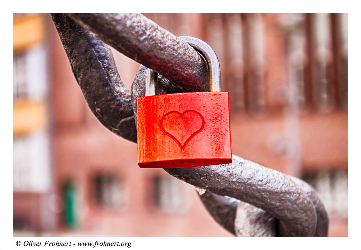 Photograph Valentine's Day by Oliver Frohnert on 500px