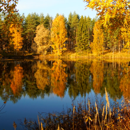 Autumn in Finland, Sony SLT-A37, Minolta/Sony AF DT 18-200mm F3.5-6.3 (D)